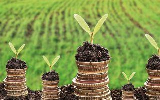 Правила и способы оплаты земельного налога