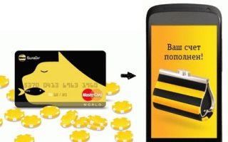 Порядок пополнения баланса мобильного бонусами Билайн