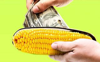 Способы снятия денег без комиссии с карты Кукуруза