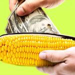 Оплата с Кукурузы