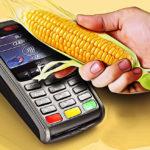Оплата Кукурузой